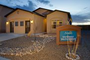 homes in Stinson Park by Abrazo Homes
