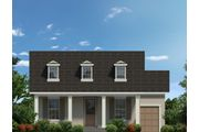 Braden - Avalon Park West: Wesley Chapel, FL - Avex Homes