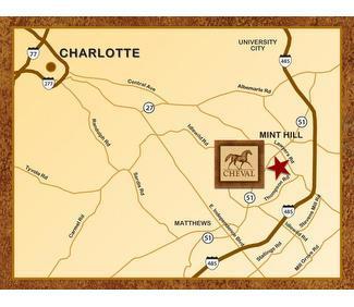 Single Family for Sale at Chateau Ledoux 6809 Joli Cheval Lane Mint Hill, North Carolina 28227 United States