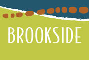 homes in Brookside by Brookfield Residential