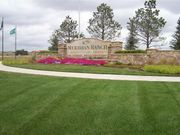 homes in Meridian Ranch by Campbell Homes