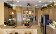 homes in The Inlets by Medallion Home