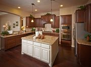 homes in Alden Woods by Coventry Homes