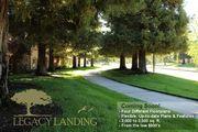 homes in Legacy Landing by Crowne Communities