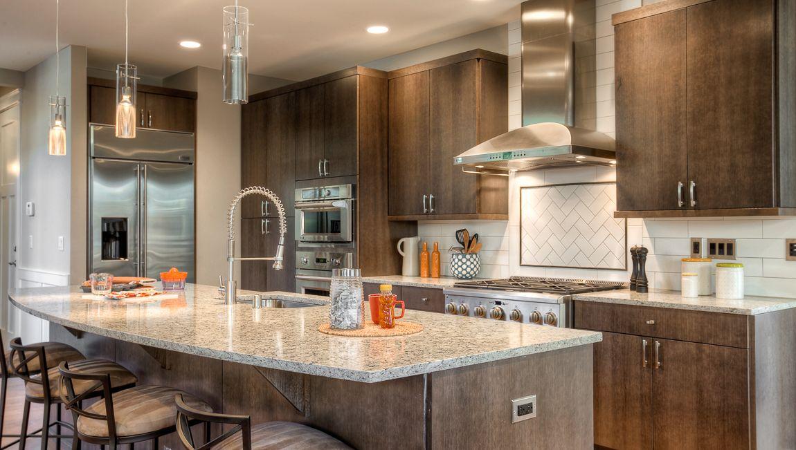 Single Family for Sale at Ashton Te11 485 233rd Place Se Sammamish, Washington 98074 United States
