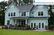 homes in Ashley Forest by Dan Ryan Builders