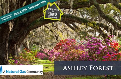 Ashley Forest by Dan Ryan Builders in Charleston South Carolina