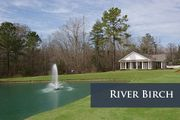 River Birch by Dan Ryan Builders