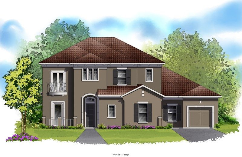 Carverdale - The Preserve at FishHawk Ranch: Lithia, FL - David Weekley Homes