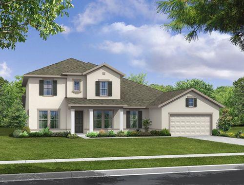Brooker Reserve Manor Series by David Weekley Homes in Tampa-St. Petersburg Florida