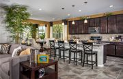 homes in Solera Diamond Valley by Del Webb