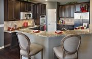 homes in Equestra by Del Webb