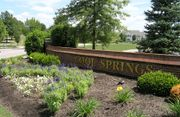 homes in Cool Springs Community: Cool Springs by Drees Homes
