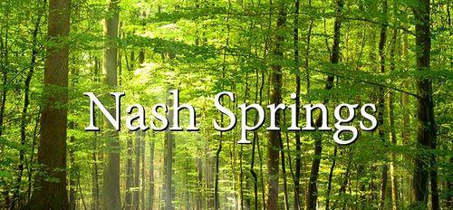 Nash Springs by FrontDoor Communities in Atlanta Georgia