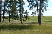 Custom Plan - Build on Your Lot Colorado Springs: Colorado Springs, CO - Genesis Custom Home