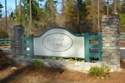 homes in Forest Creek by Great Southern Homes