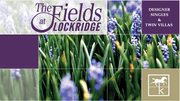homes in The Fields at Lockridge by Kay Builders