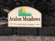 homes in Avalon Meadows by Lombardo Homes