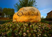 homes in The Orchard at Penryn Park by Mandarich Developments