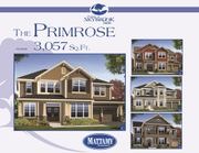 homes in Parkside at Skybrook North by Mattamy Homes