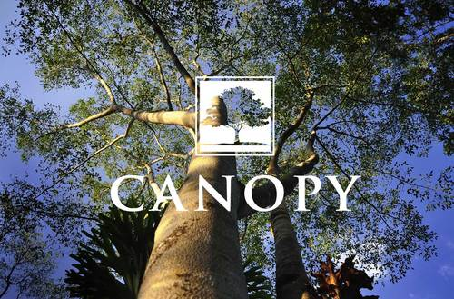 Canopy by Neal Communities in Naples Florida