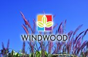 Windwood<
