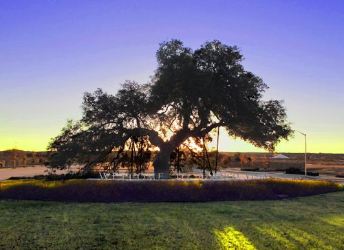 Blanco Vista Heritage Trace by Pacesetter Homes in Austin Texas
