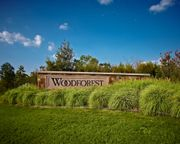 homes in Woodforest 50' by Perry Homes