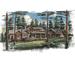 Pine Canyon - Lot 259