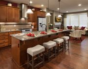 homes in The Brownstones at Issaquah Highlands by Polygon Northwest