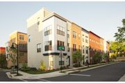 Calder - Arts District Hyattsville: Hyattsville, MD - Pulte Homes