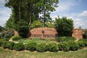 homes in Forest Springs by Royal Oaks Homes